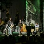Zadeno Trio (2014)